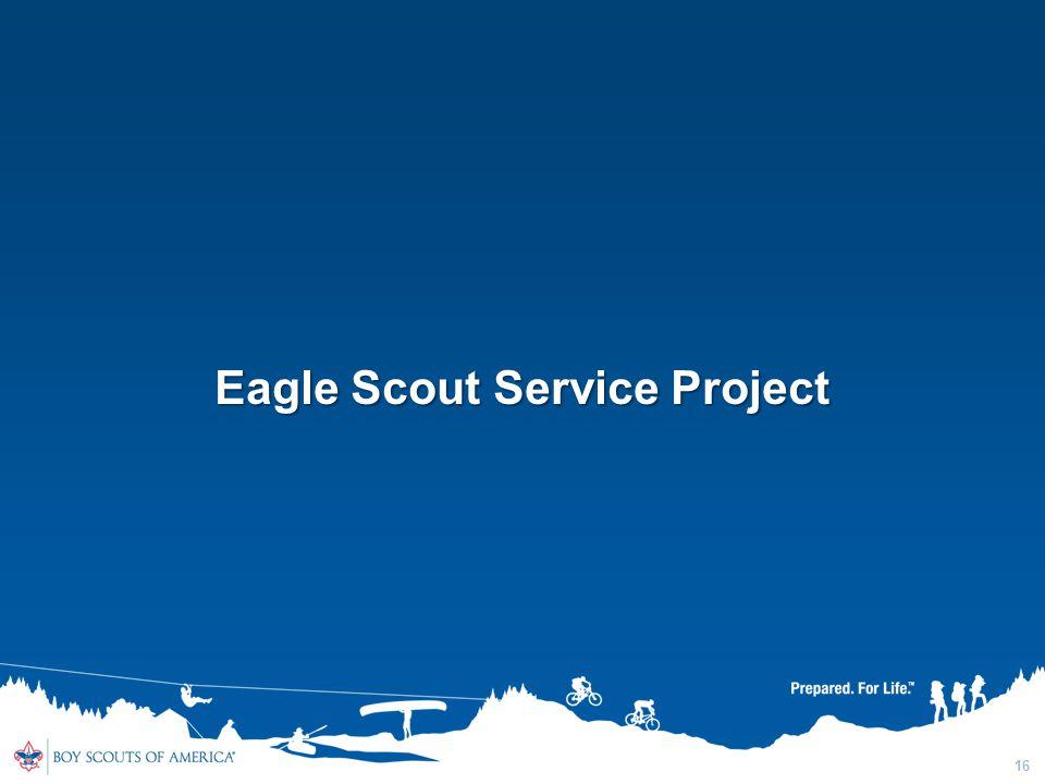 16 Eagle Scout Service Project