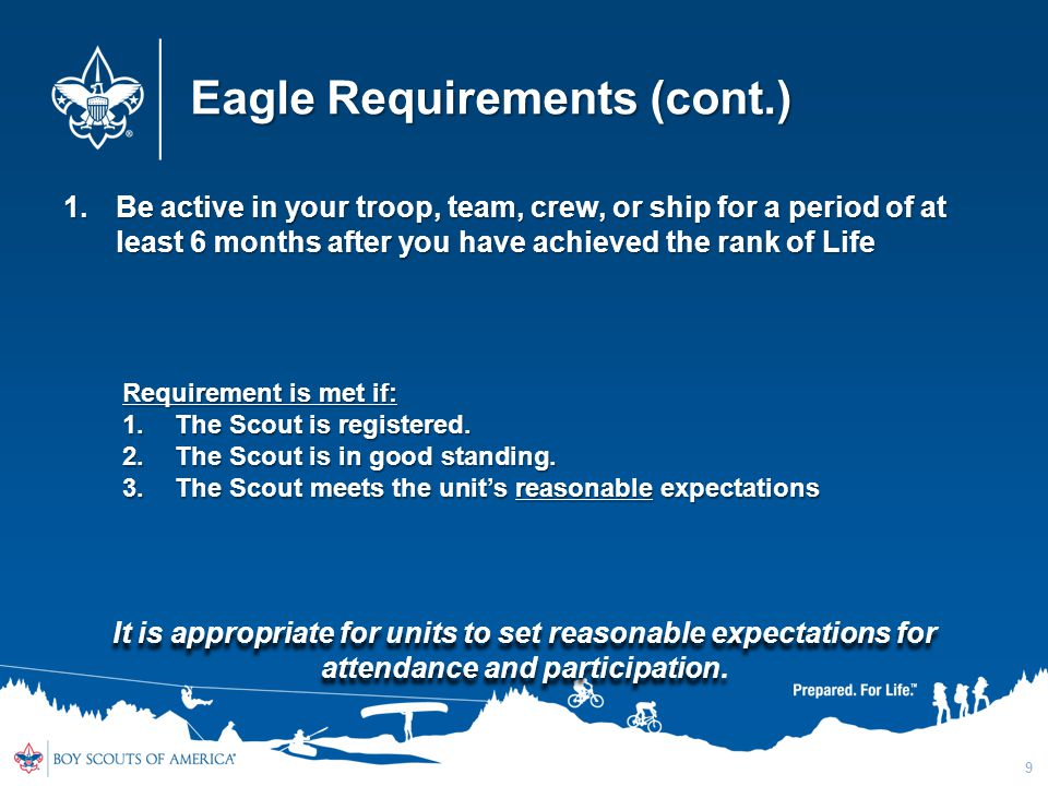 Eagle Requirements (cont.) 1.Be active in your troop, team, crew, or ship for a period of at least 6 months after you have achieved the rank of Life 9