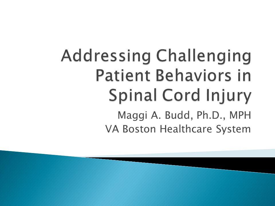 Maggi A. Budd, Ph.D., MPH VA Boston Healthcare System