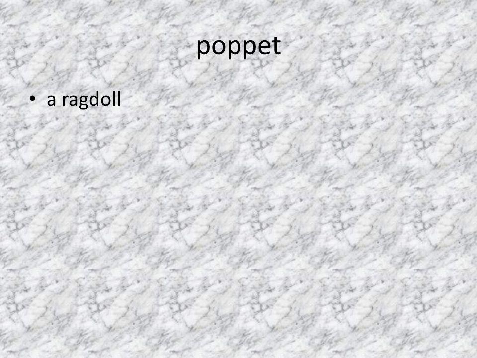 poppet a ragdoll