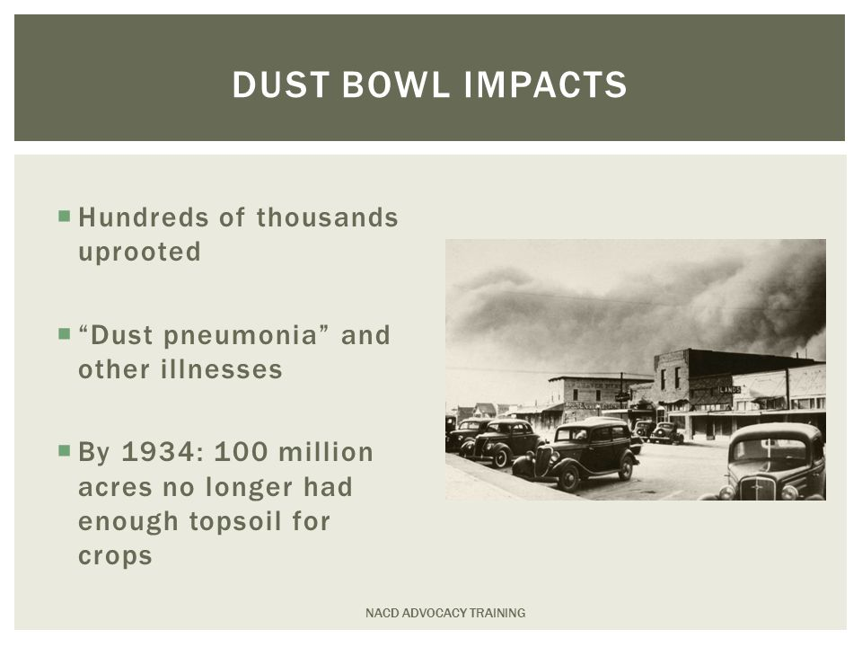 DUST BOWL IMPACTS  Hundreds of thousands uprooted  Dust pneumonia and other illnesses  By 1934: 100 million acres no longer had enough topsoil for crops