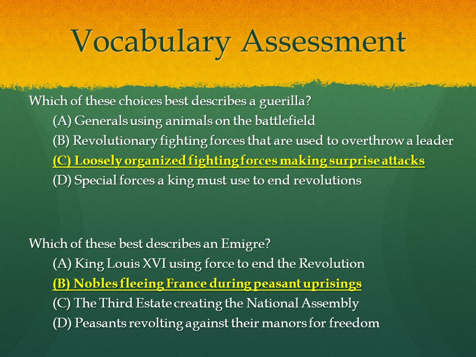 Vocabulary Assessment Which of these choices best describes a guerilla.