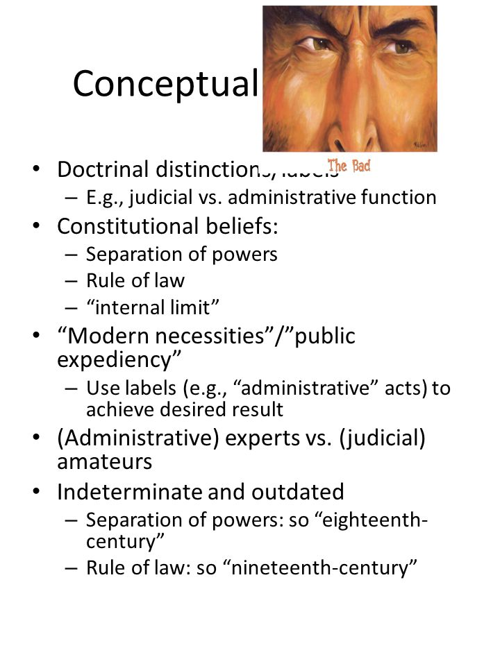 Conceptual (The Bad) Doctrinal distinctions/labels – E.g., judicial vs. administrative function Constitutional beliefs: – Separation of powers – Rule