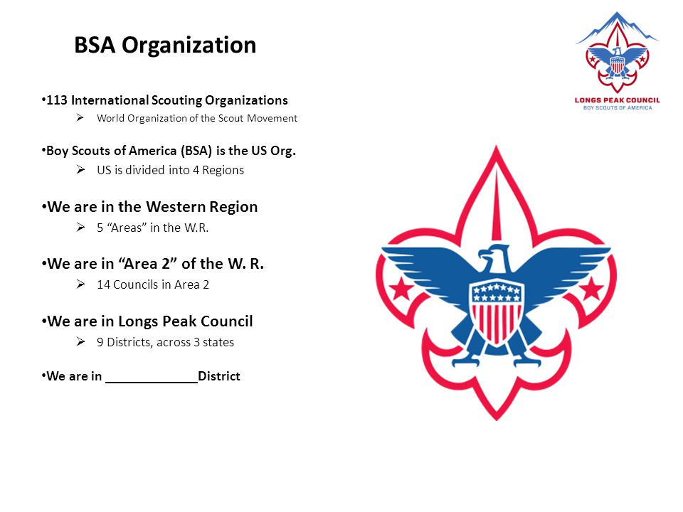 BSA Organization 113 International Scouting Organizations  World Organization of the Scout Movement Boy Scouts of America (BSA) is the US Org.  US i