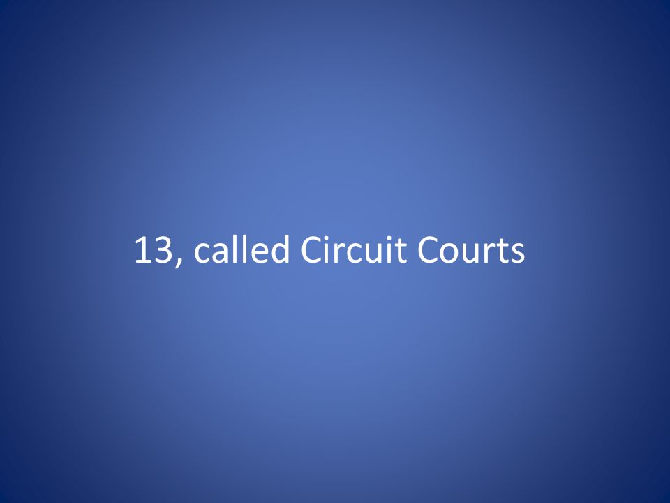 13, called Circuit Courts