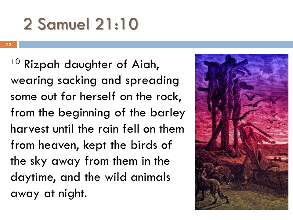 2 Samuel 21:10 10 Rizpah daughter of Aiah, wearing sacking and spreading some out for herself on the rock, from the beginning of the barley harvest un