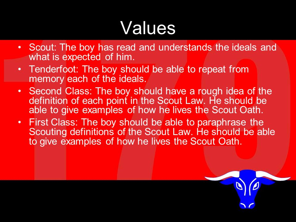 Values Scout: The boy has read and understands the ideals and what is expected of him.