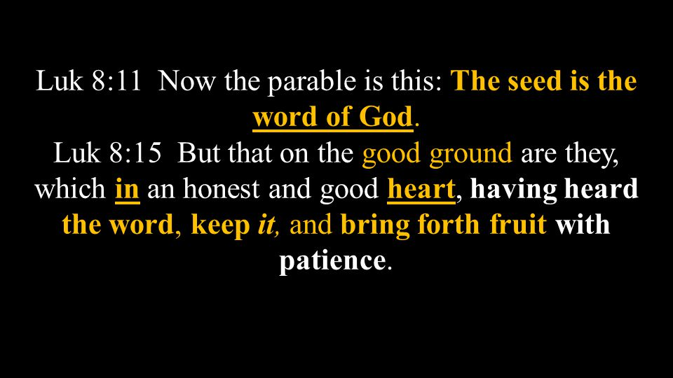 Luk 8:11 Now the parable is this: The seed is the word of God.