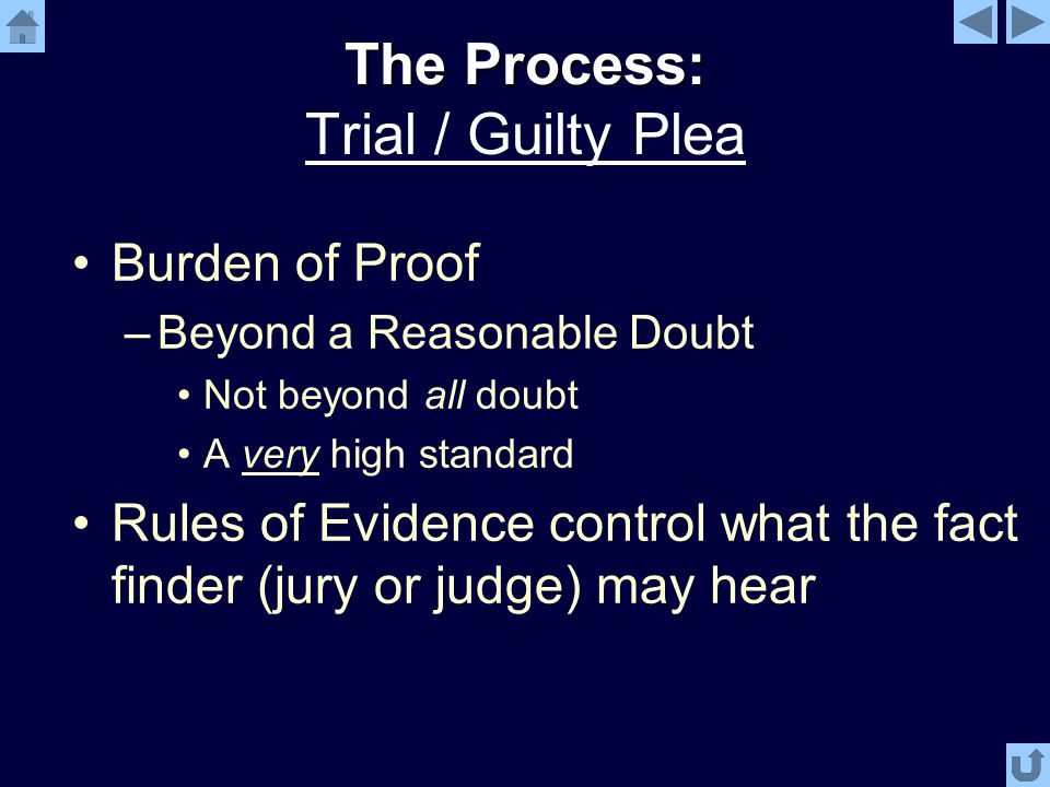 The Process: The Process: Trial / Guilty Plea Burden of Proof –Beyond a Reasonable Doubt Not beyond all doubt A very high standard Rules of Evidence control what the fact finder (jury or judge) may hear