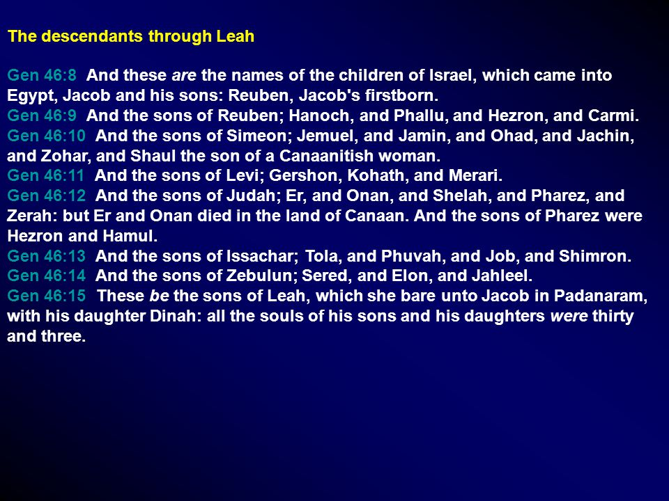 Gen 46:8 And these are the names of the children of Israel, which came into Egypt, Jacob and his sons: Reuben, Jacob's firstborn. Gen 46:9 And the son
