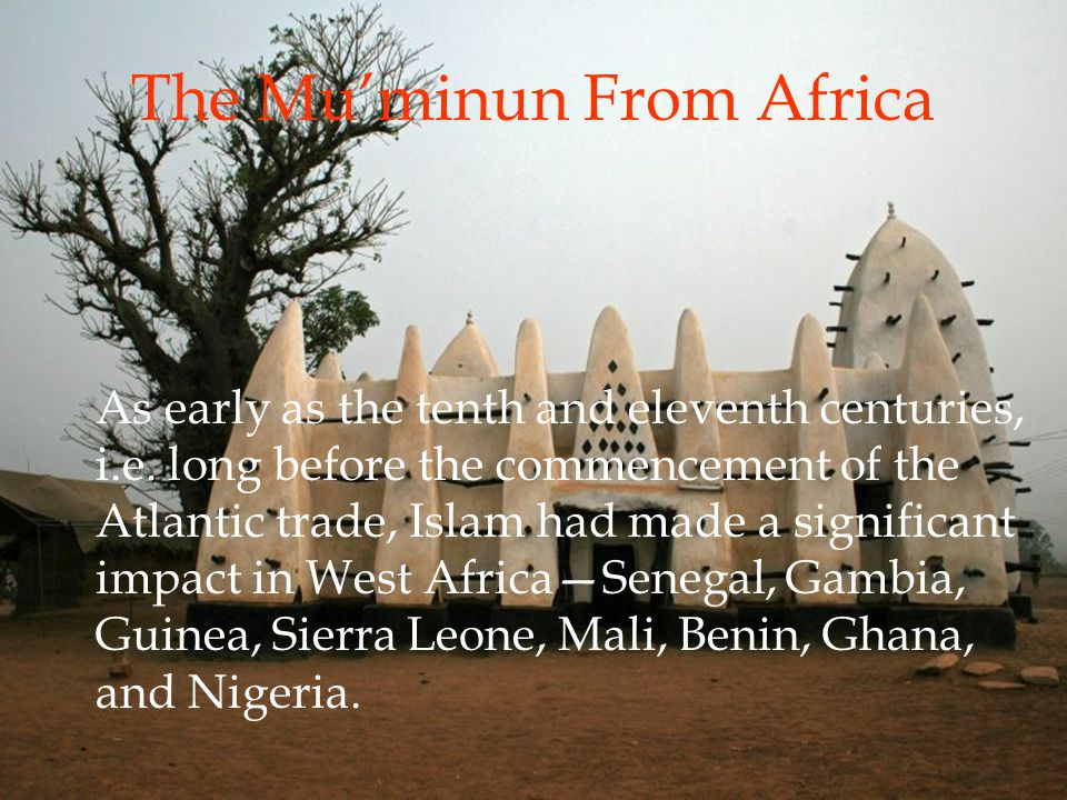 The Mu'minun From Africa As early as the tenth and eleventh centuries, i.e.