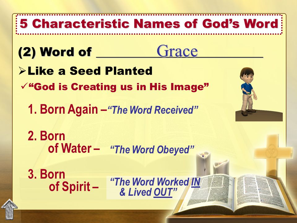 5 Characteristic Names of God's Word  Like a Seed Planted (2) Word of ___________________________ Grace God is Creating us in His Image 1.
