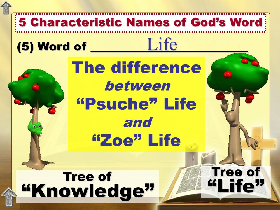 5 Characteristic Names of God's Word (5) Word of ___________________________ Life The difference between Psuche Life and Zoe Life Tree of Knowledge Tree of Life