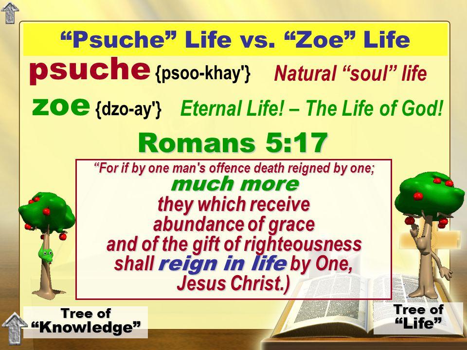 """Psuche"" Life vs. ""Zoe"" Life Tree of ""Knowledge"" Tree of ""Life"" psuche {psoo-khay'} zoe {dzo-ay'} Natural ""soul"" life Eternal Life! – The Life of God!"