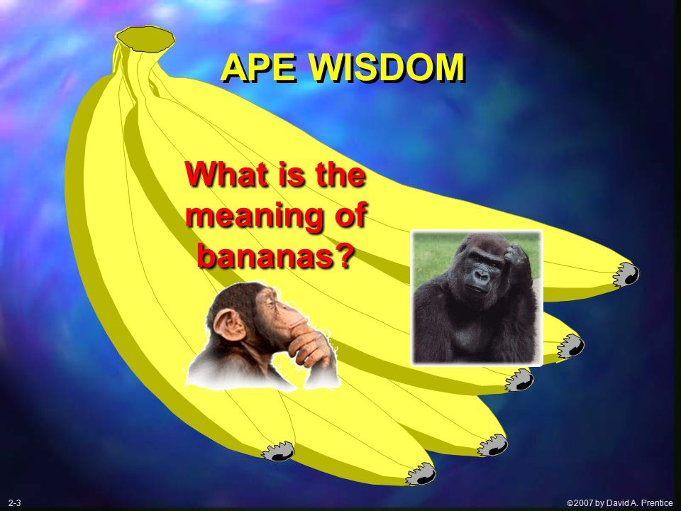  2007 by David A. Prentice APE WISDOM What is the meaning of bananas 2-3