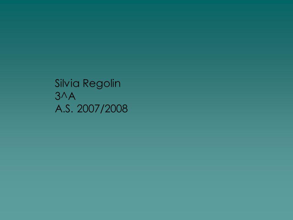 Silvia Regolin 3^A A.S. 2007/2008
