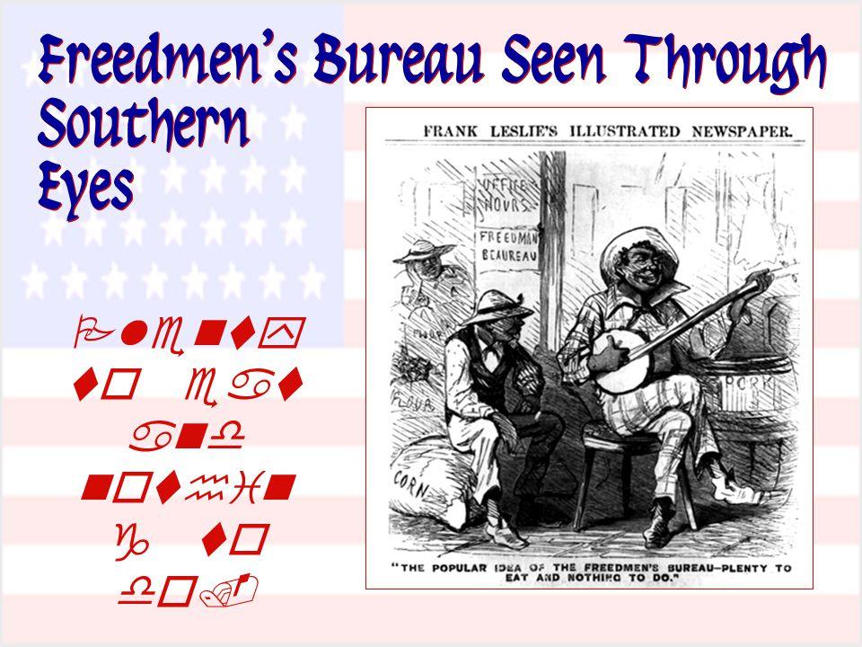 Freedmen's Bureau Seen Through Southern Eyes      