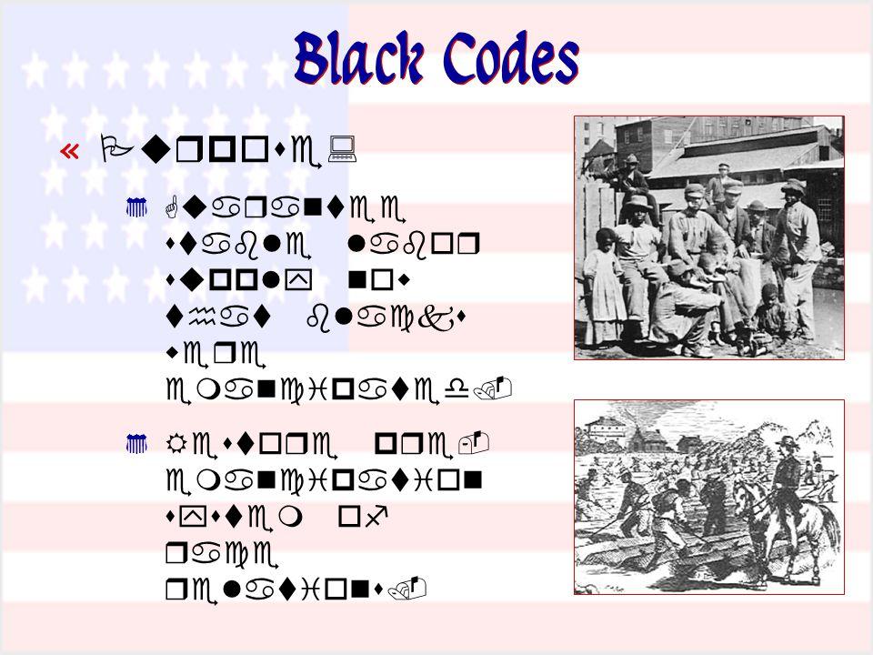 Black Codes «               «      