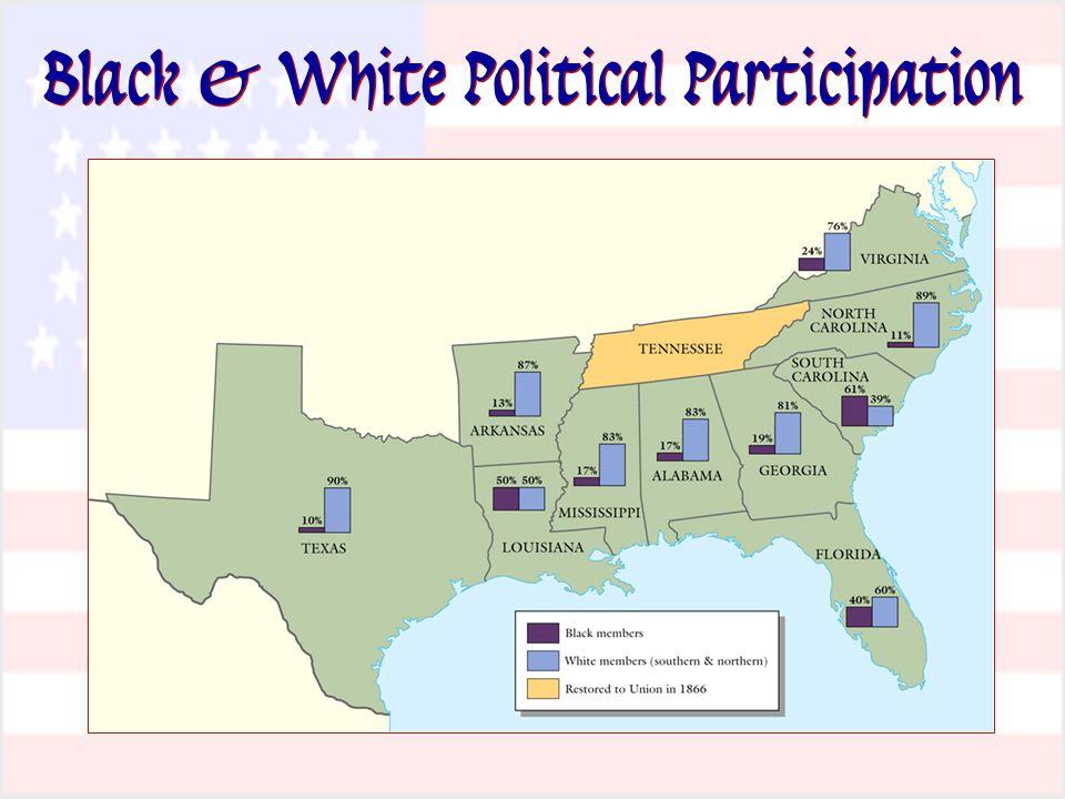 Black & White Political Participation