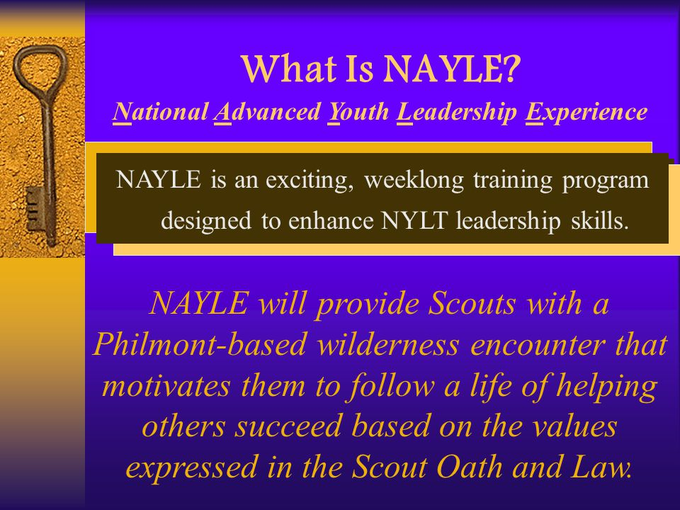 What Is NAYLE.