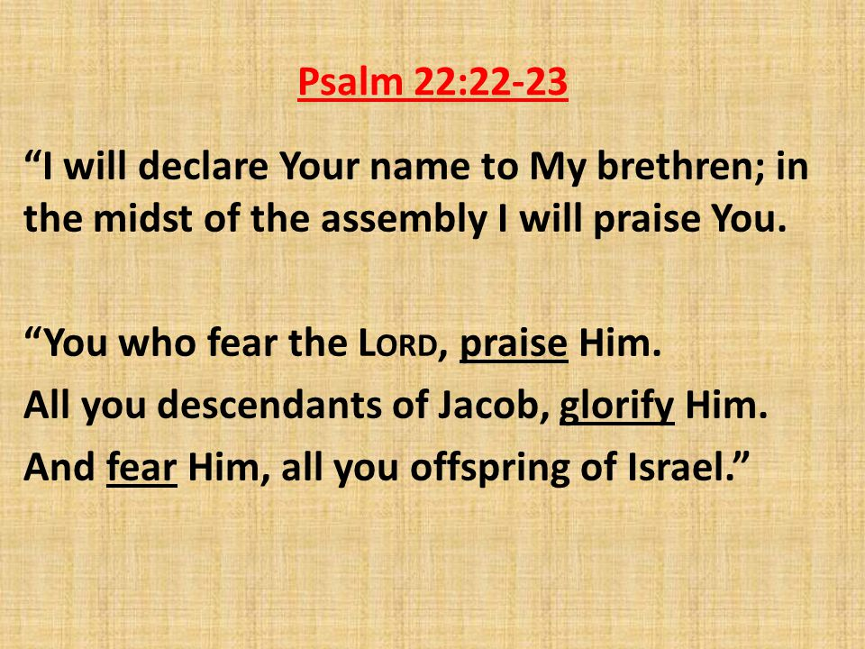 Psalm 22:22-23 I will declare Your name to My brethren; in the midst of the assembly I will praise You.
