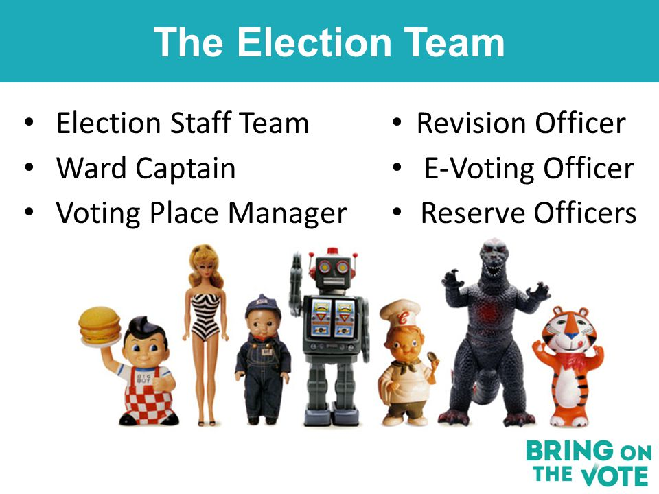 The Election Team Revision Officer E-Voting Officer Reserve Officers Election Staff Team Ward Captain Voting Place Manager