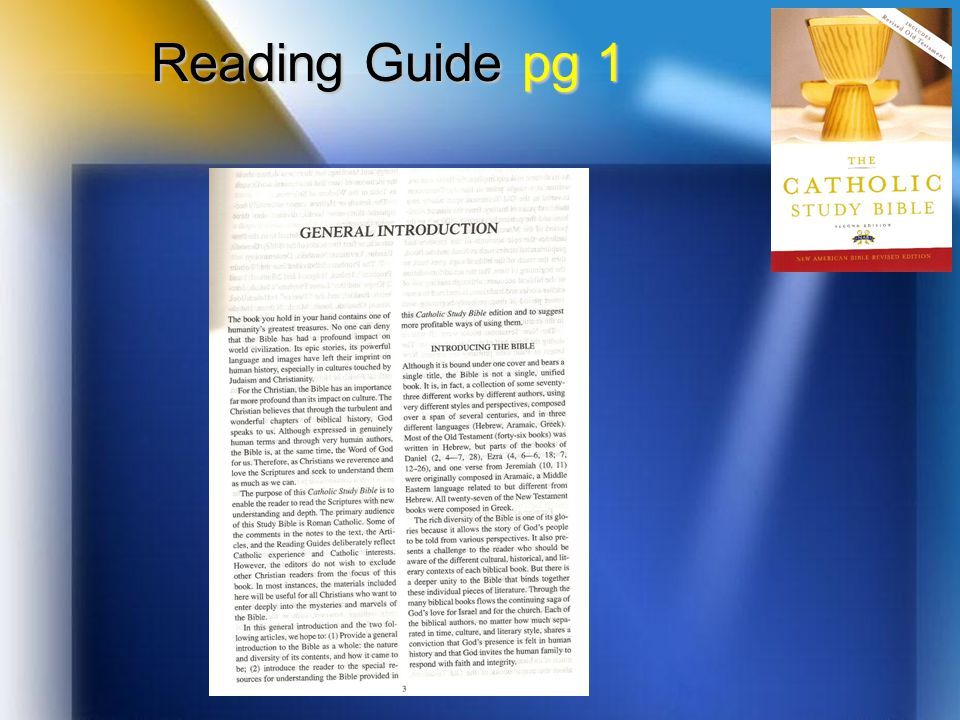 Reading Guide pg 1