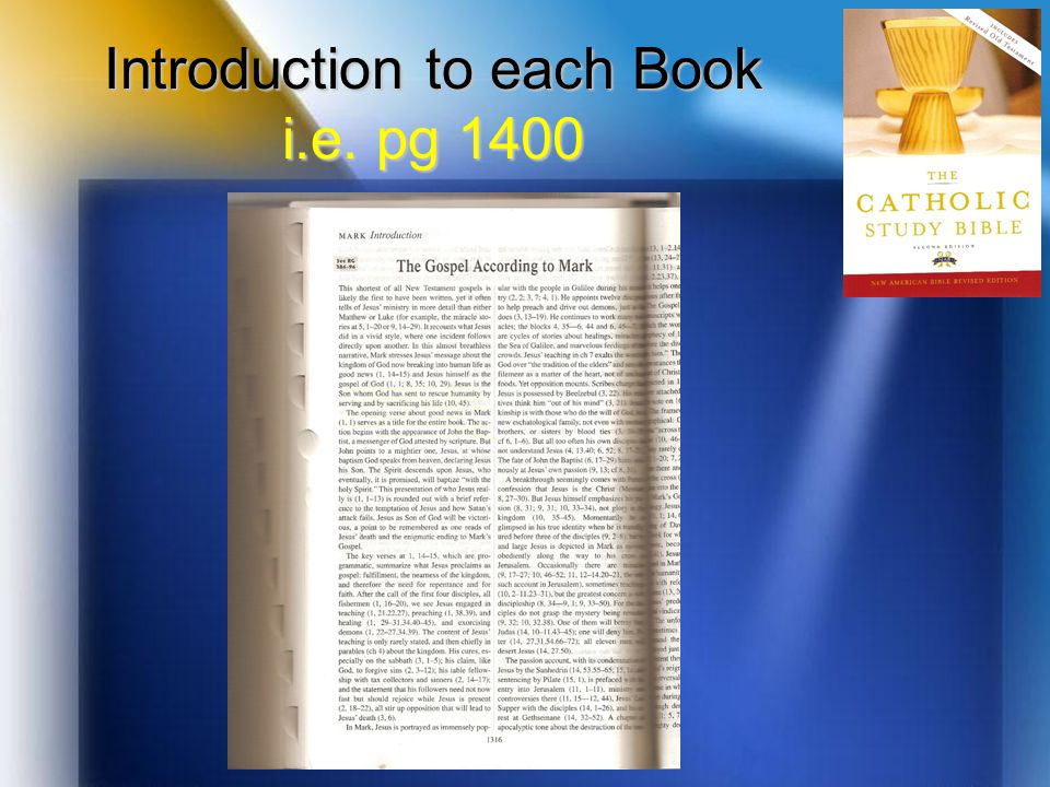 Introduction to each Book i.e. pg 1400