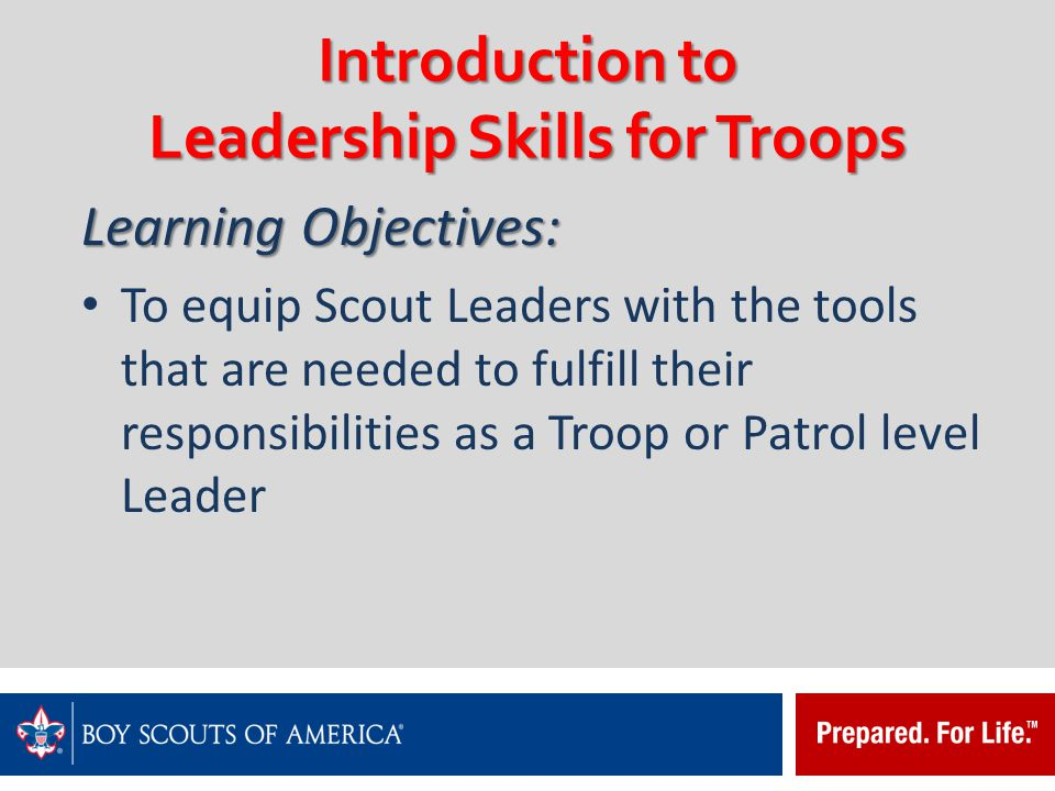 Introduction to Leadership Skills for Troops The only thing that is asked is that you do your very best for the members of the team that you have been chosen to serve.
