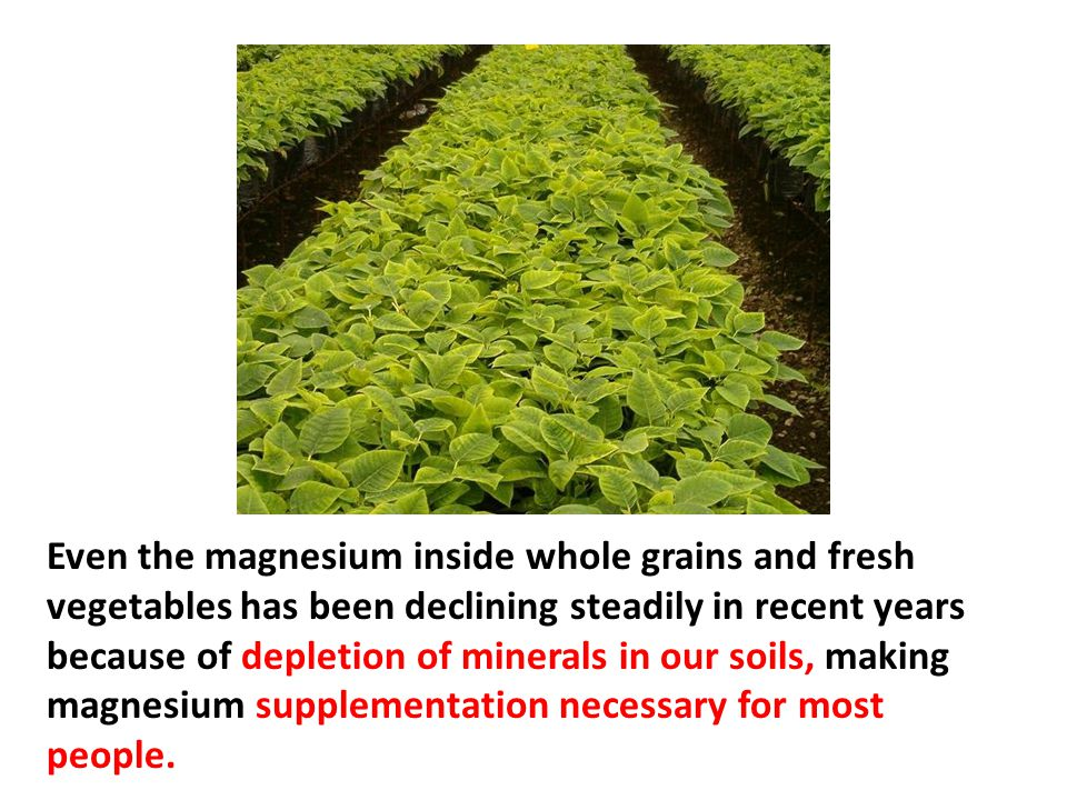 Doctors have NOT been using the appropriate test for magnesium – their serum blood tests just distort their perceptions.