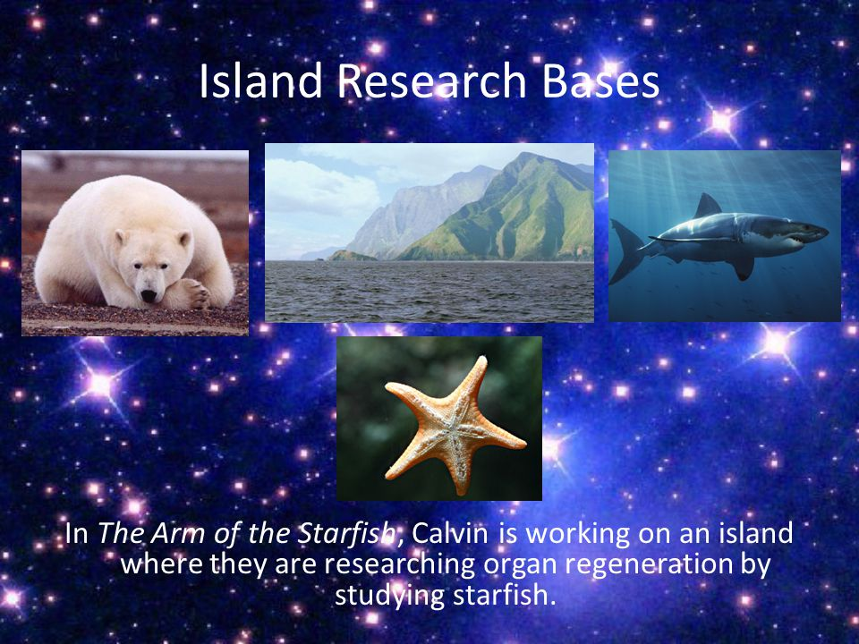 Island Research Bases In The Arm of the Starfish, Calvin is working on an island where they are researching organ regeneration by studying starfish.