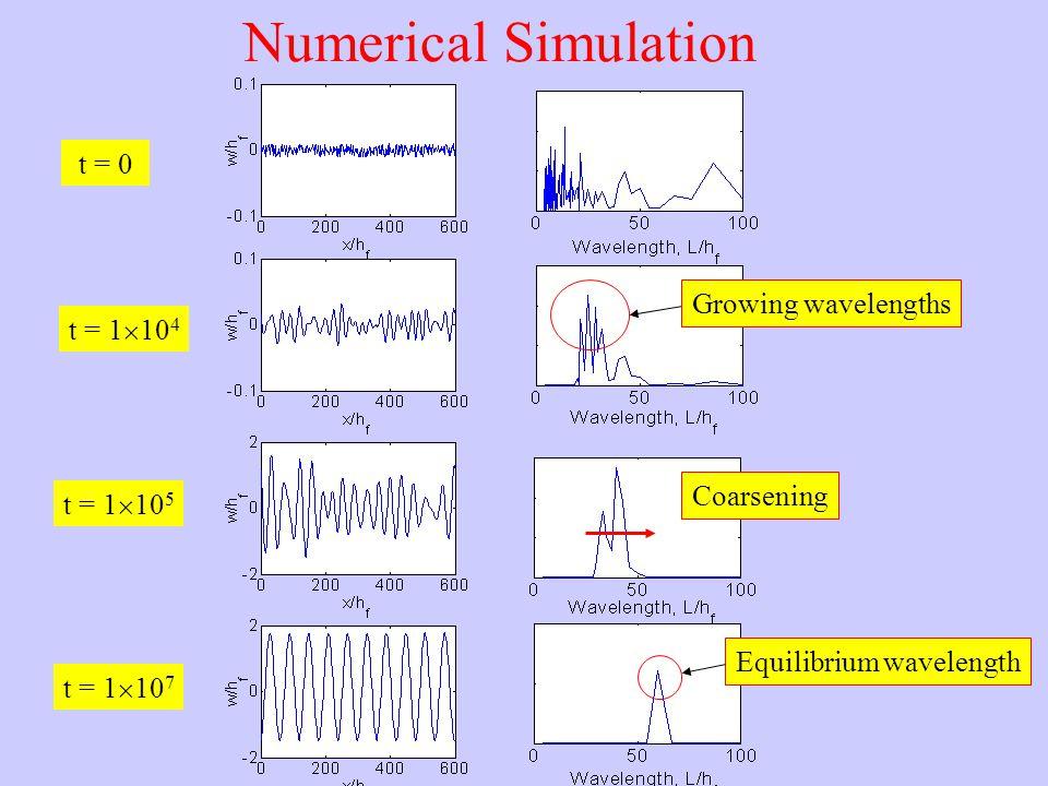 t = 0 t = 1  10 4 Numerical Simulation t = 1  10 5 t = 1  10 7 Growing wavelengths Coarsening Equilibrium wavelength