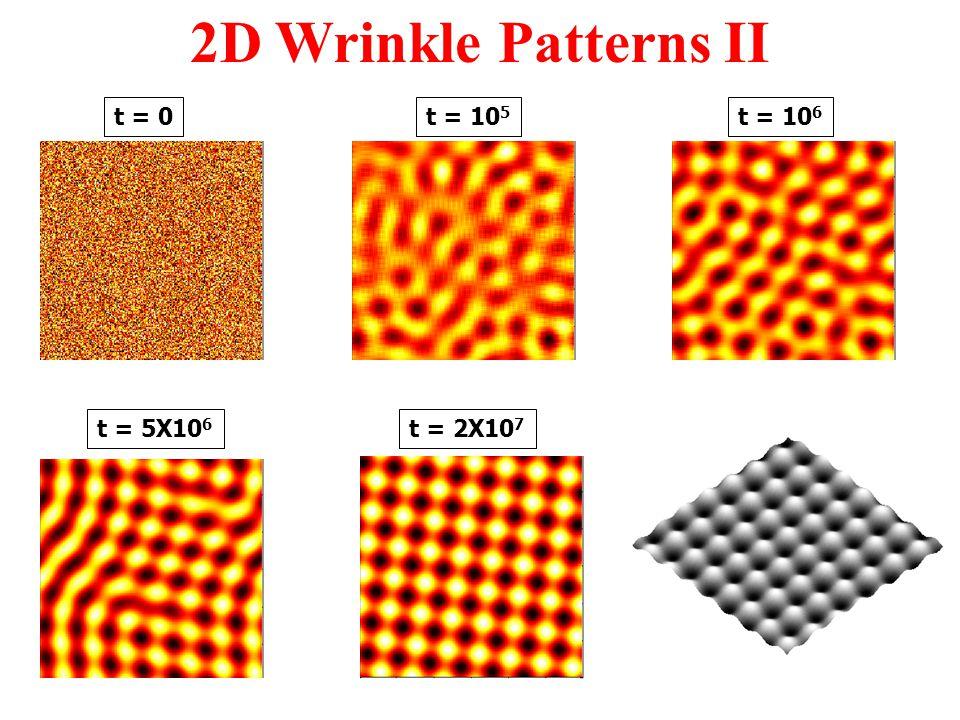 t = 0t = 10 5 t = 2X10 7 t = 10 6 t = 5X10 6 2D Wrinkle Patterns II