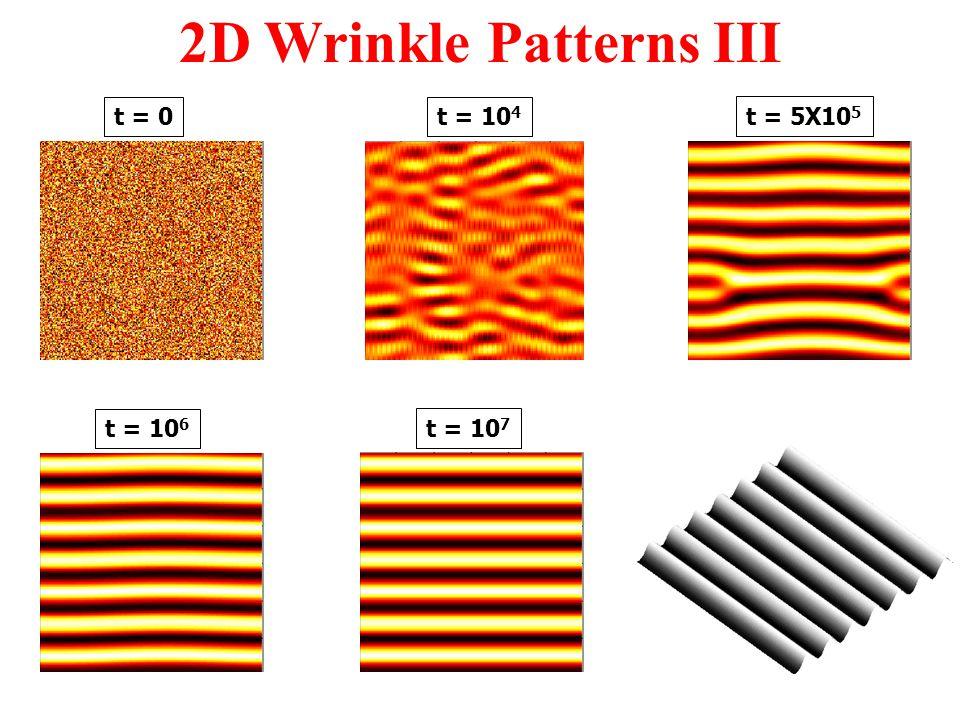 t = 10 7 t = 5X10 5 t = 10 6 t = 10 4 2D Wrinkle Patterns III t = 0