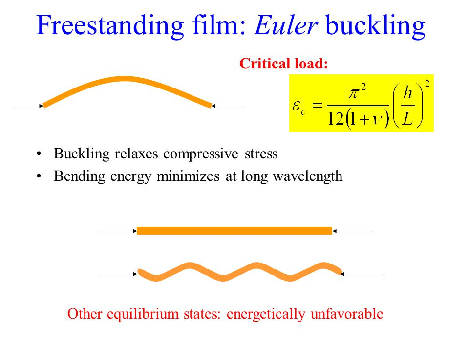 Freestanding film: Euler buckling Critical load: Other equilibrium states: energetically unfavorable Buckling relaxes compressive stress Bending energy minimizes at long wavelength