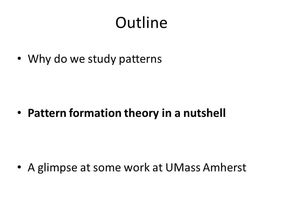 Outline Why do we study patterns Pattern formation theory in a nutshell A glimpse at some work at UMass Amherst