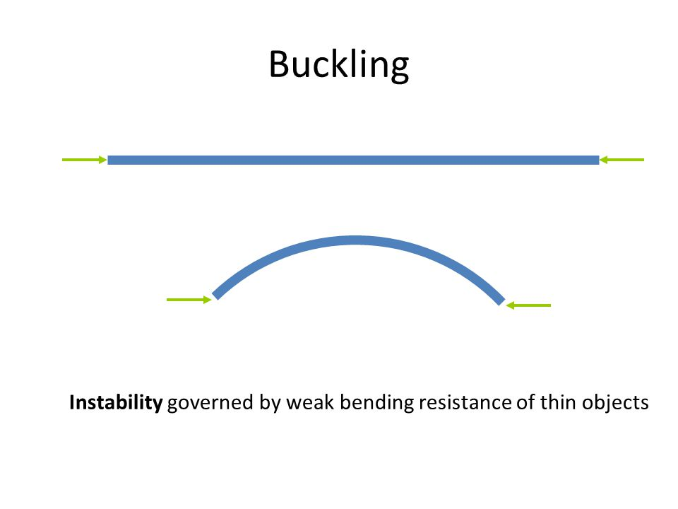 Buckling Instability governed by weak bending resistance of thin objects
