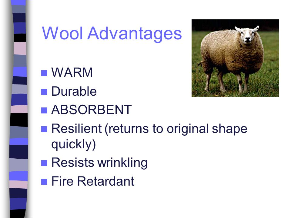 Wool Advantages WARM Durable ABSORBENT Resilient (returns to original shape quickly) Resists wrinkling Fire Retardant