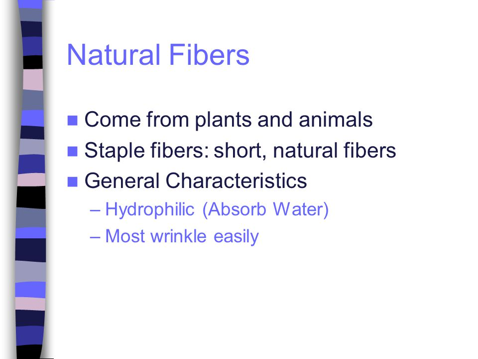 Natural Fibers Come from plants and animals Staple fibers: short, natural fibers General Characteristics –Hydrophilic (Absorb Water) –Most wrinkle easily