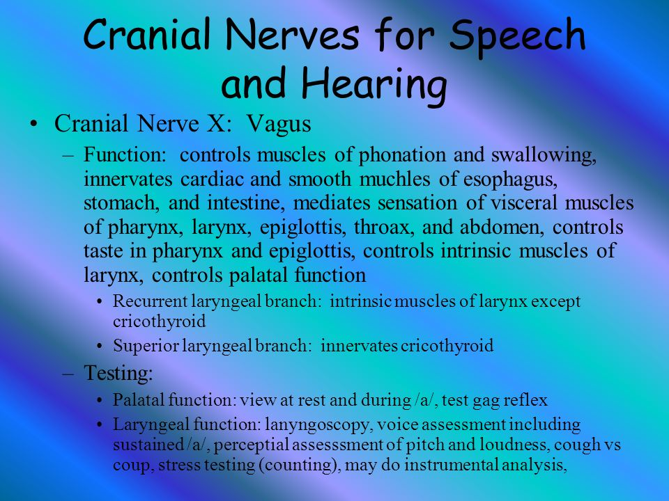 Cranial Nerves for Speech and Hearing Cranial Nerve X: Vagus –Function: controls muscles of phonation and swallowing, innervates cardiac and smooth mu