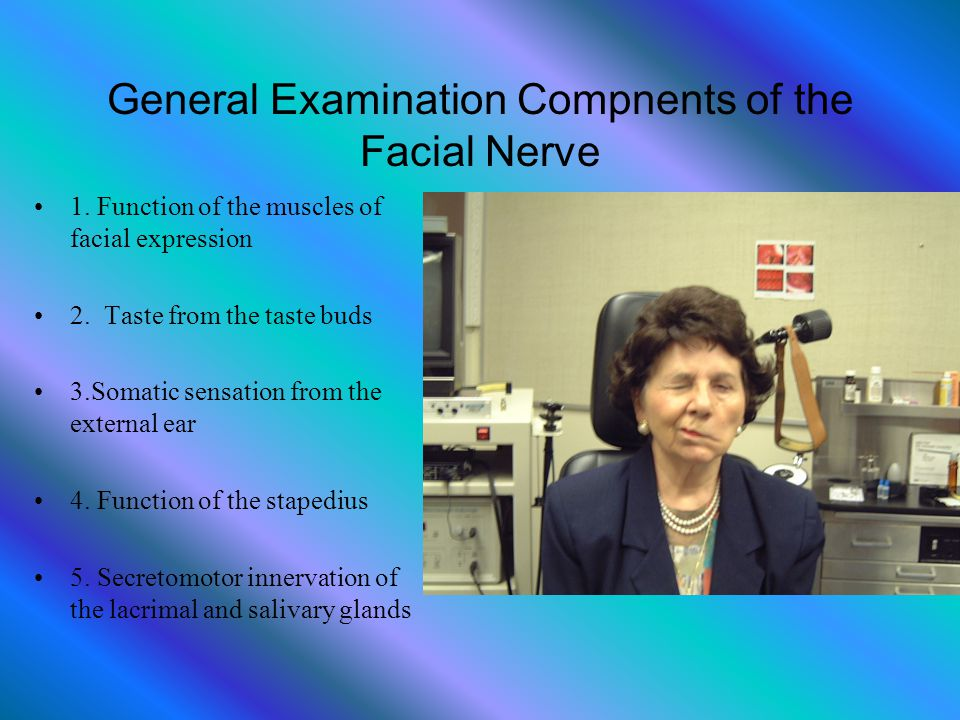 General Examination Compnents of the Facial Nerve 1. Function of the muscles of facial expression 2. Taste from the taste buds 3.Somatic sensation fro