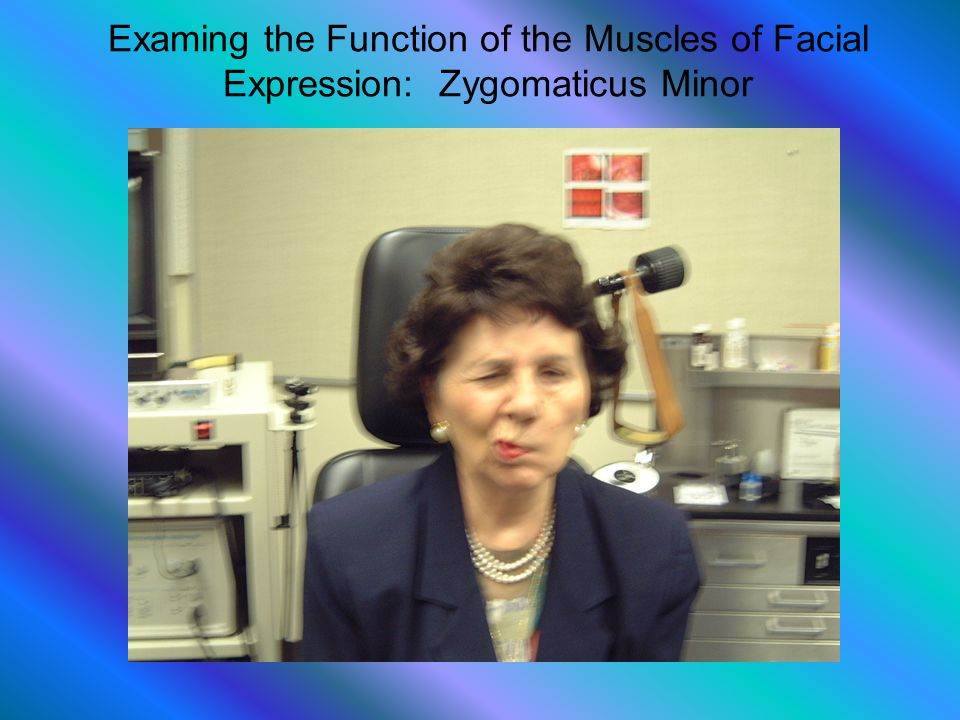 Examing the Function of the Muscles of Facial Expression: Zygomaticus Minor