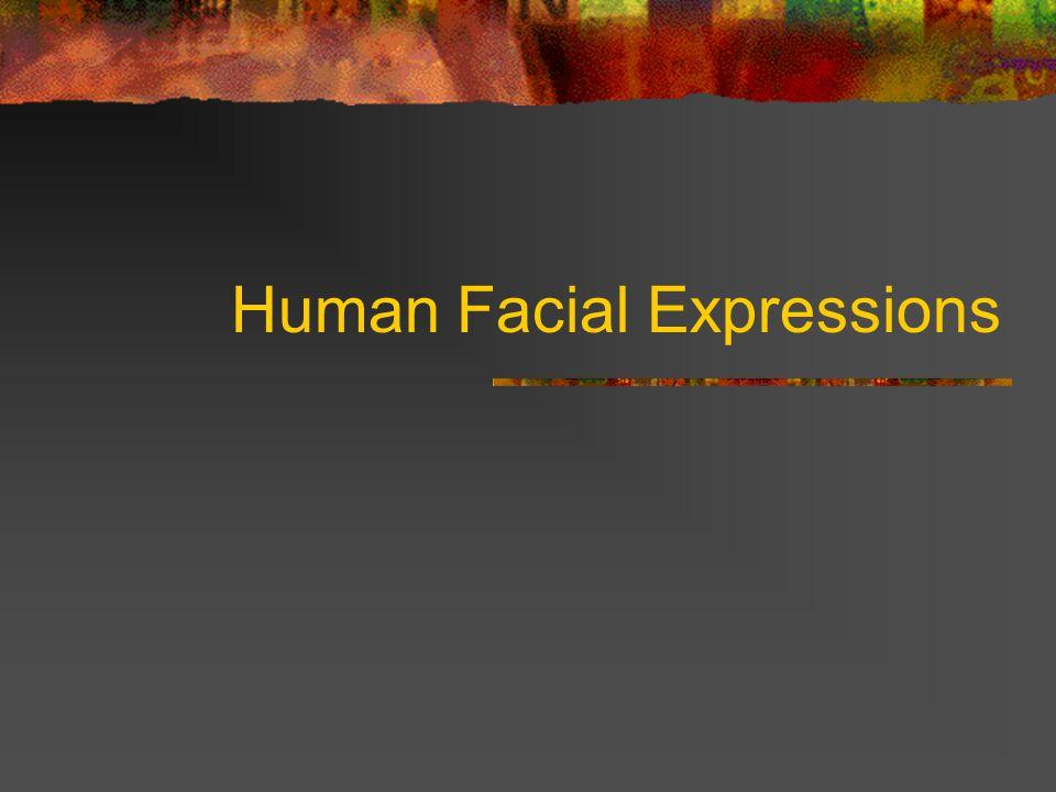 Human Facial Expressions