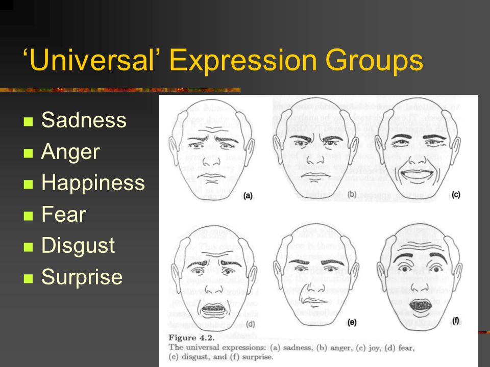 'Universal' Expression Groups Sadness Anger Happiness Fear Disgust Surprise