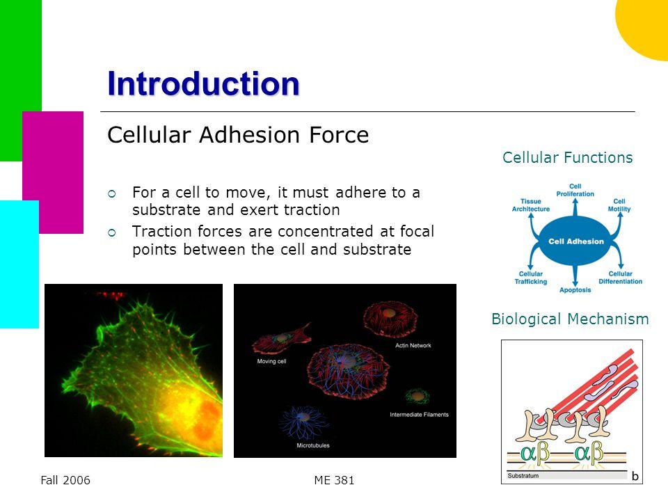 Fall 2006ME 38133 Future Studies  3D Analysis – Software improvements