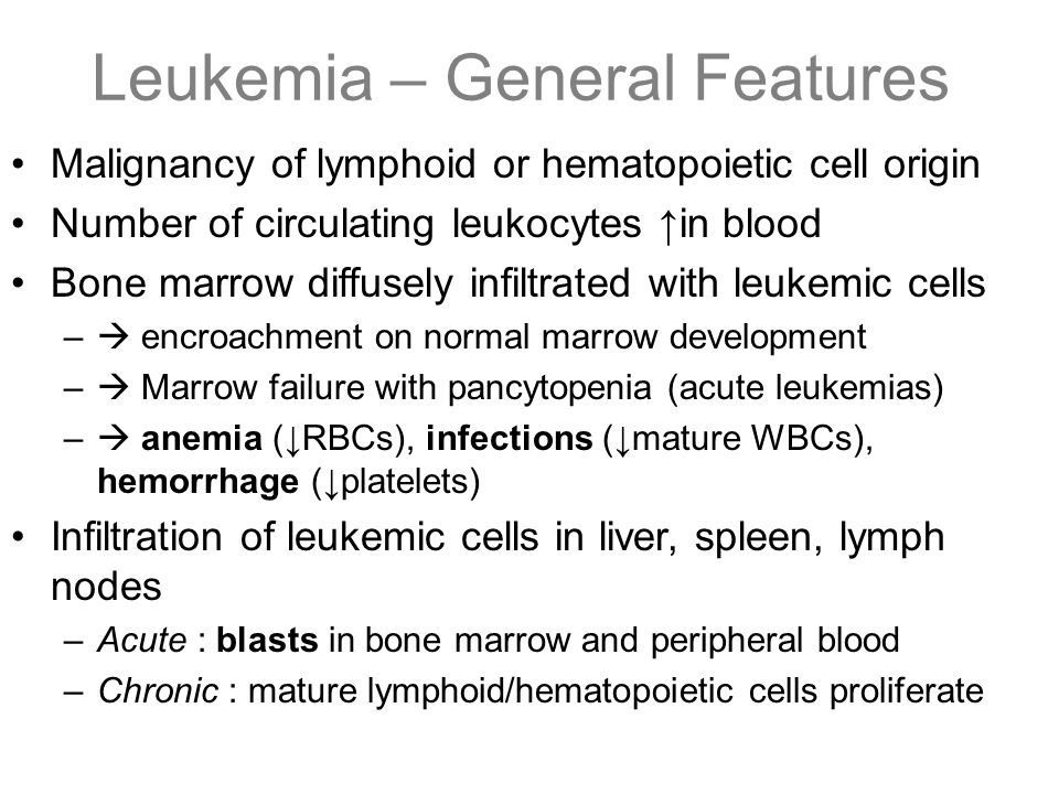 Leukemia – General Features Malignancy of lymphoid or hematopoietic cell origin Number of circulating leukocytes ↑in blood Bone marrow diffusely infil