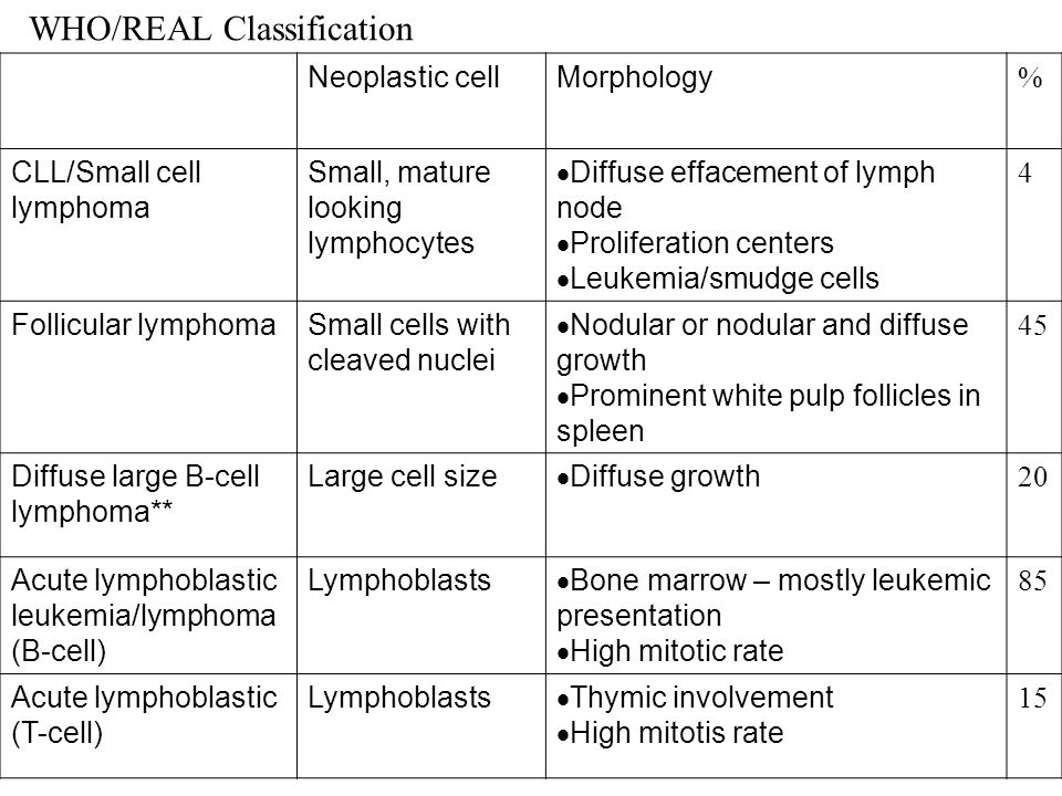 WHO/REAL Classification Neoplastic cellMorphology % CLL/Small cell lymphoma Small, mature looking lymphocytes  Diffuse effacement of lymph node  Pro