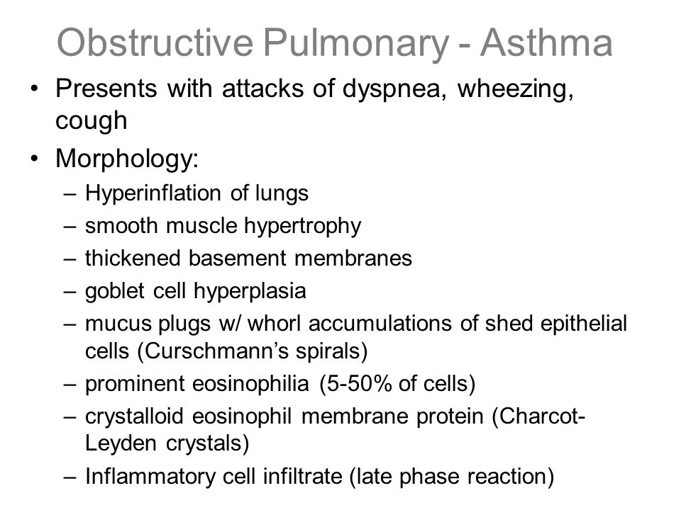 Obstructive Pulmonary - Asthma Presents with attacks of dyspnea, wheezing, cough Morphology: –Hyperinflation of lungs –smooth muscle hypertrophy –thic