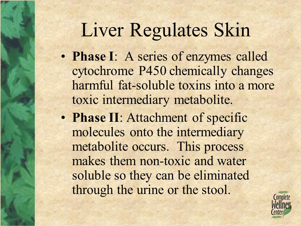 Liver Regulates Skin Phase I: A series of enzymes called cytochrome P450 chemically changes harmful fat-soluble toxins into a more toxic intermediary metabolite.