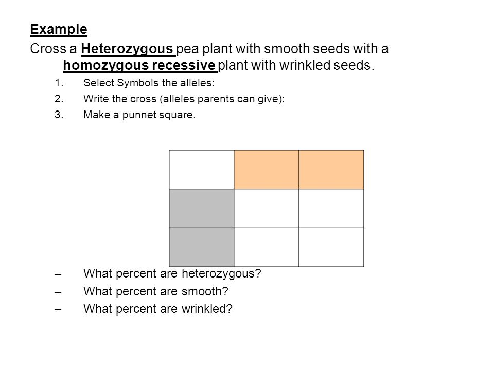 Example Cross a Heterozygous pea plant with smooth seeds with a homozygous recessive plant with wrinkled seeds.